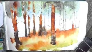 Pine trees watercolor plein air painting