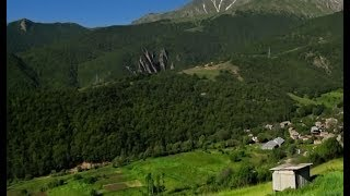 Հայաստանի անտառները ավելի պաշտպանված կլինեն