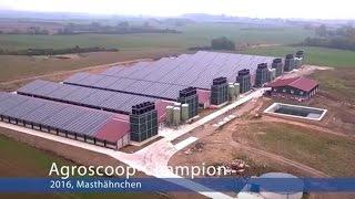 ForFarmers - Agroscoop-Champion 2016 - Masthähnchen