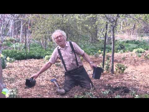 Henry Ross Memorial slideshow 1 of 3 Gardenview Horticultural Park 1-11-2014   Organic Slant