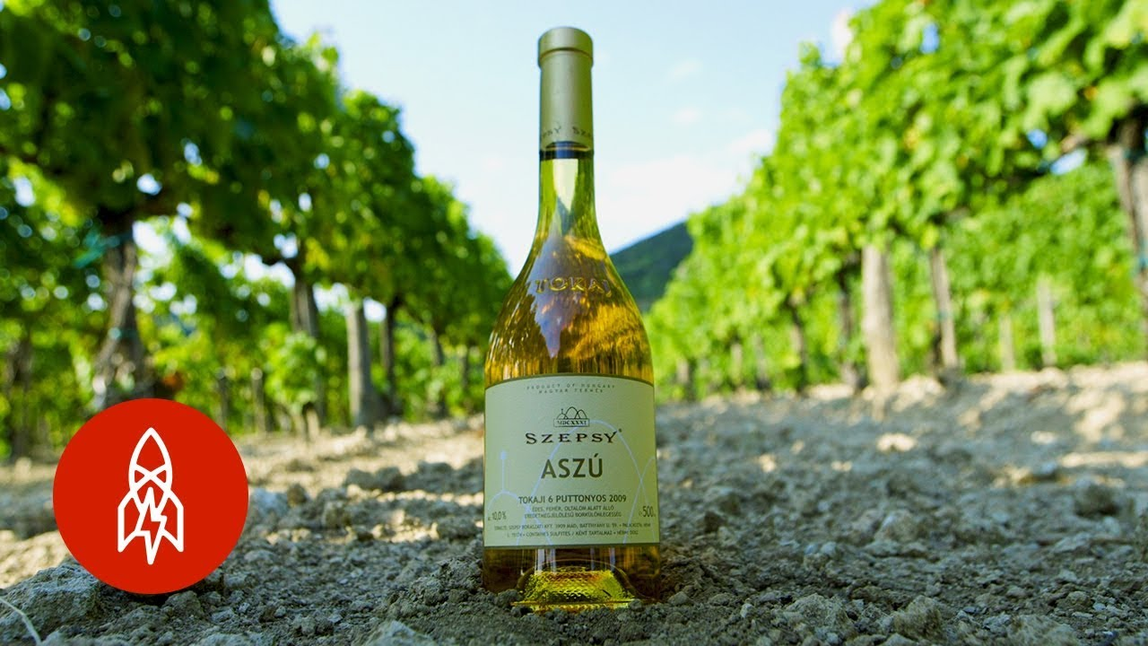 How 'Rotten' Grapes Become Hungary's Transcendent Tokaji Wine
