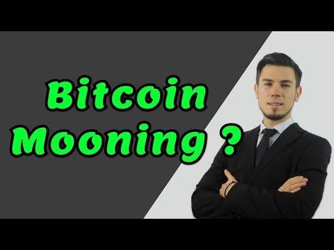 BITCOIN MOONING ? - Crypto Trading Analysis & BTC Cryptocurrency Price News 2019