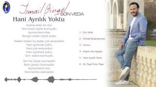 ismail Bingol - Hani Ayrilik Yoktu  Resimi