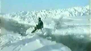 Polar Explorers - North Pole Dog Sled Expedition 1993