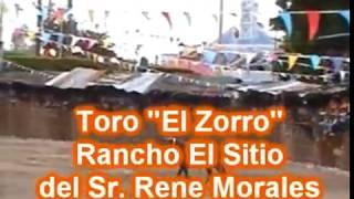 Video Choky 2011 - con su caballo Torero