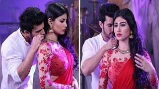 Naagin: Shivanya and Rithik To Die In Final Episode