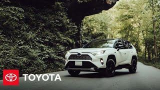 """homepage tile video photo for """"The American Journey"""" Kentucky Tour 