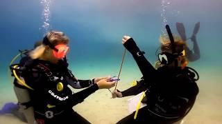Utila Dive Centre - Instructor Development Course - November IDC Highlights