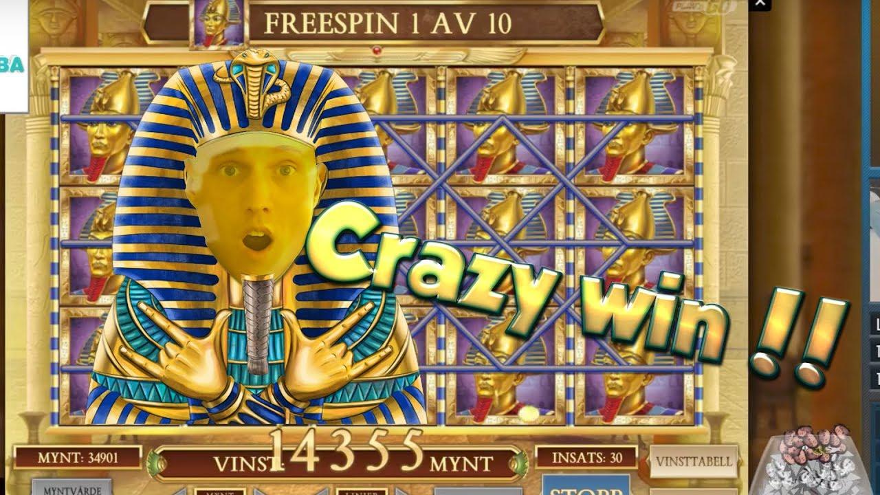 Book Of Dead Online Casinos