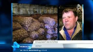 Дорого и плохо: российская картошка уступила зарубежной в борьбе за место в магазинах