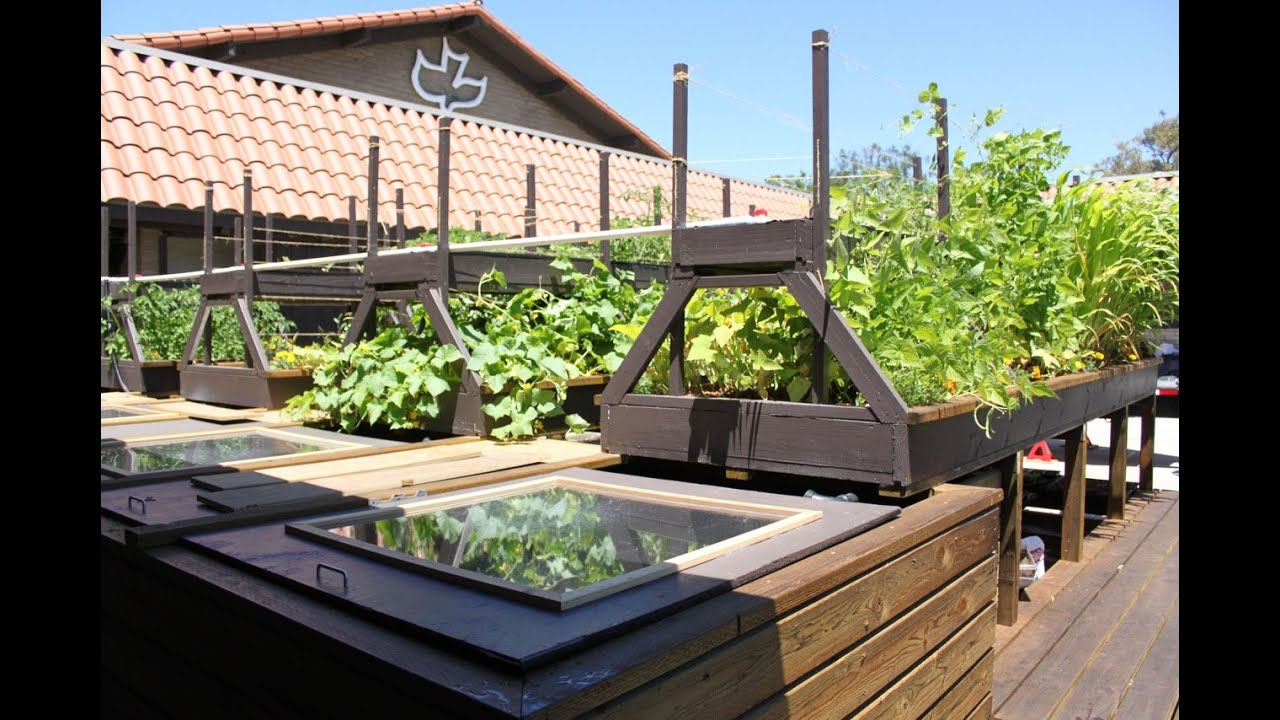Diy plans how to build an indoor home aquaponics system for Make your own indoor garden