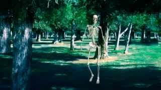 Bhootnath Skeleton dance in garden pop dj music song funny most wanted 3D