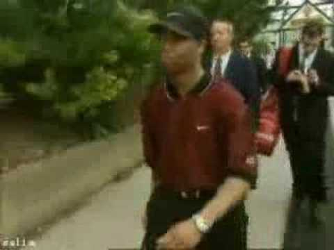 Bad day for tiger
