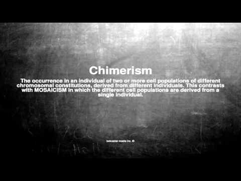 Medical vocabulary: What does Chimerism mean