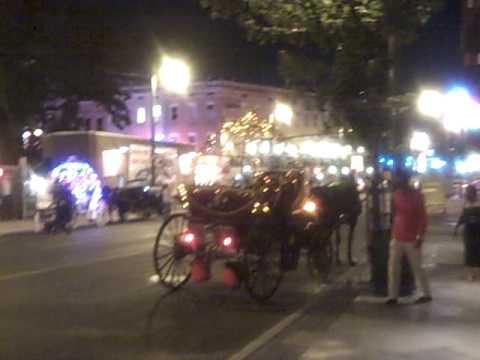 Memphis horse carriage