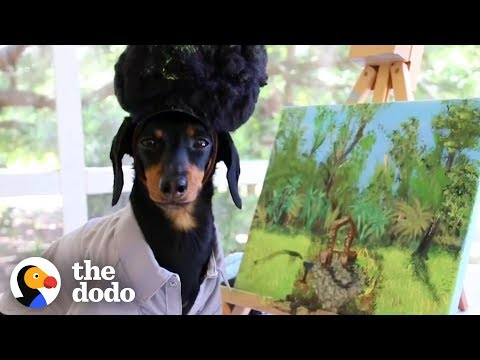 Big Jim - At Work - WATCH: It's A Dog's Life - Try Not To Be Jealous