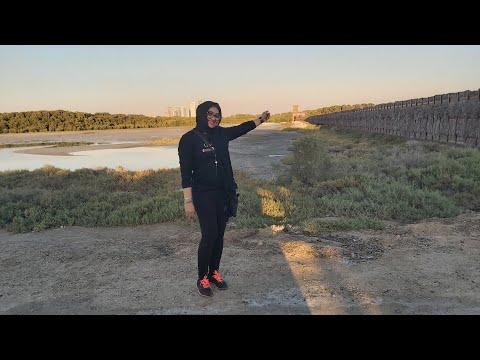 ദുബായിൽ കണ്ടോ അരയന്ന കൊക്ക് Dubai Flamingo view deck park Ras Al khor – Vlog/chippus Ridingcool