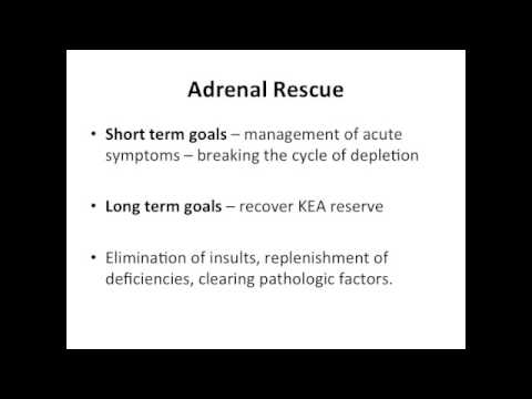 The Adrenals, Chroic Stress, and Adrenal Rescue