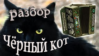 Разбор песни Черный кот