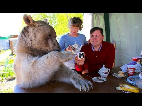 Bear About The House: Living With My Supersize Pet - Trailer