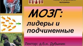 Дубынин Вячеслав - Мозг: лидеры и подчинённые
