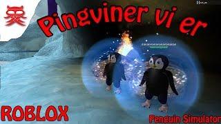 Cute Penguins-Penguin Simulator-English Roblox