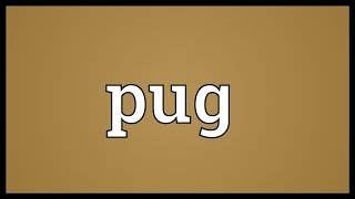 Pug Meaning