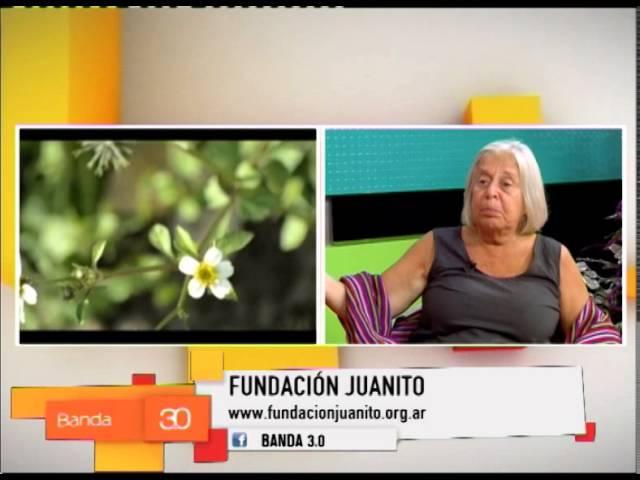 FUNDACIÓN JUANITO