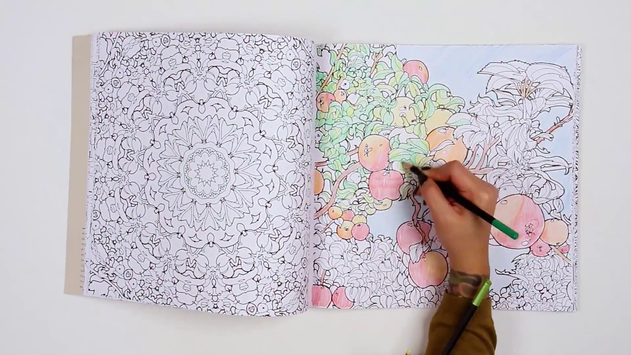 Fantastic Planet Coloring Book By Steve McDonald