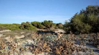 Travel information HD video Mallorca
