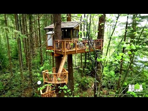 Behind the Build: Nelson Family Treehouse