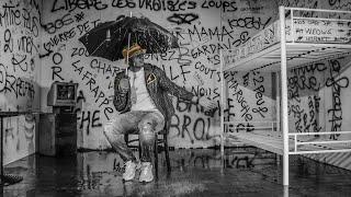 Смотреть клип Hornet La Frappe - Gardav