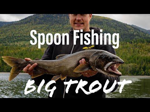 Shuswap Lake Kootenay Lake Arrow Lakes Rainbow Trout Spoons