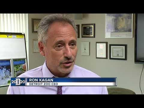 Detroit Zoo CEO talks about building an aquarium in downtown Detroit