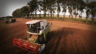 Młócenie Lnu ✯ Claas Avero 240 ✯ Rolnictwo z drona ✯ DJI Phantom 2