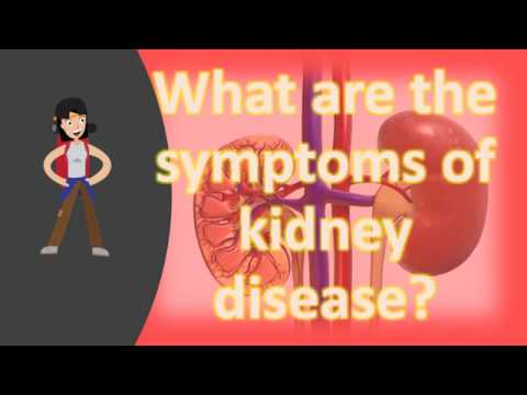 What are the symptoms of kidney disease ?