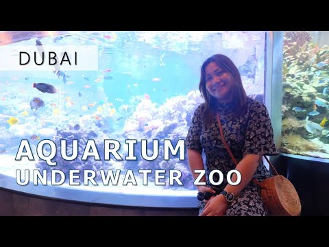 Dubai Aquarium and Underwater Zoo l Dubai Mall
