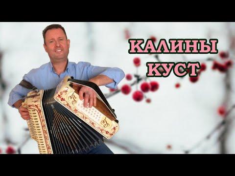 Паша гармонист - Калины куст