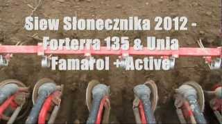 Siew Słonecznika 2012 - Forterra 135 & Unia Famarol + Active [HD]