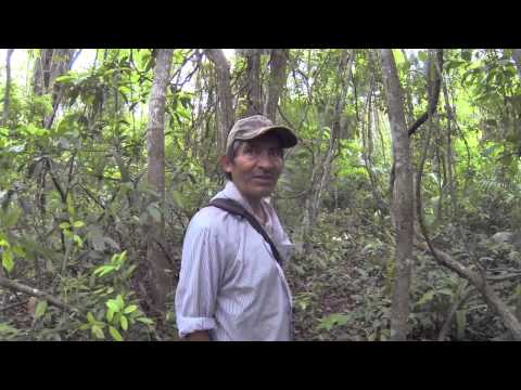 Loving Belize episode 11 - Tourist Advice, Lubaantun Mayan site, El Pilar Mayan site
