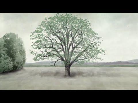 Histoires d'arbres : de Pères en fils