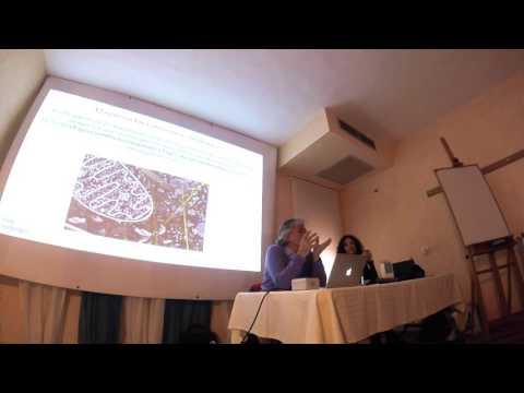 Presentación de Freebioenergy ES/IT