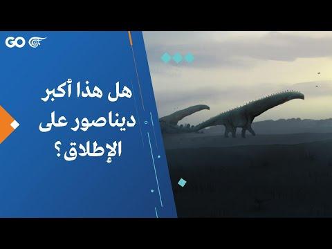 هل هذا أكبر ديناصور على الإطلاق؟