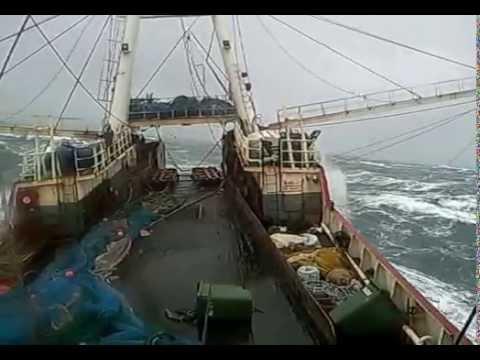 Temporal mar argentino