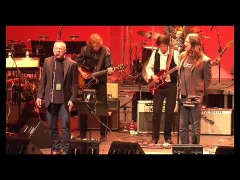 Wild Honey Orch-Everybody's Got Something to Hide...(Steven McDonald & David Goodstein)