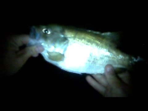 Lure Fishing #27 - Big Rock Bass Night Fishing and Small Creek Jigging for Largemouth Bass