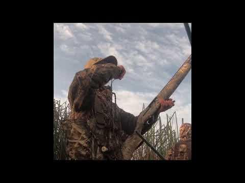 Mendota Duck Hunt