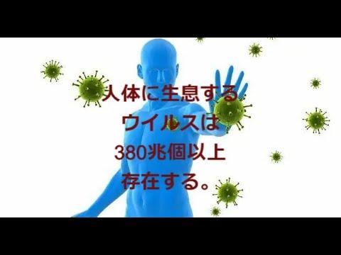 人体の常在ウイルスは380兆個以上存在する。:多くは細菌に感染するバクテリアファージですが、すべての生物の機能と進化に関わっております。その1 続きは国際キャリア支援協会youtubeにて