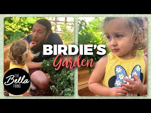 Birdie HELPS Daddy in the GARDEN!