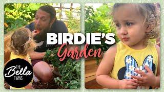 birdie-helps-daddy-in-the-garden